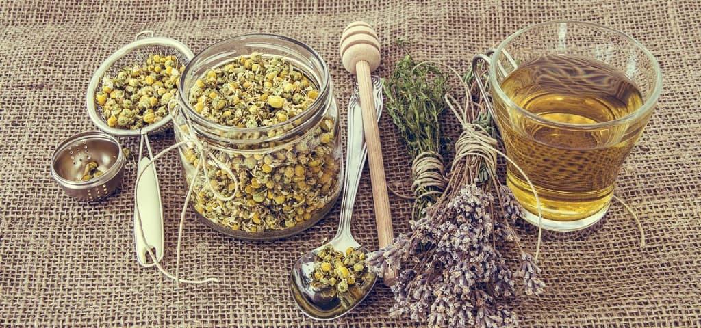 kräuter sauna spa immunsystem wellness neptunbad köln
